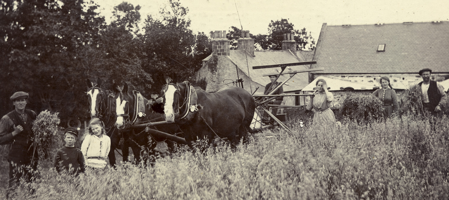 farming family with horse drawn harvester