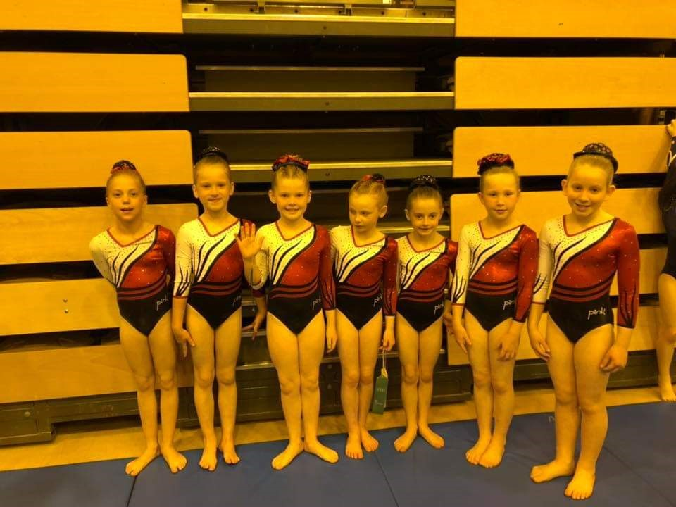Gymastics lined up for a group photo